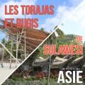Les Torajas et Bugis de Sulawesi (Indonésie)