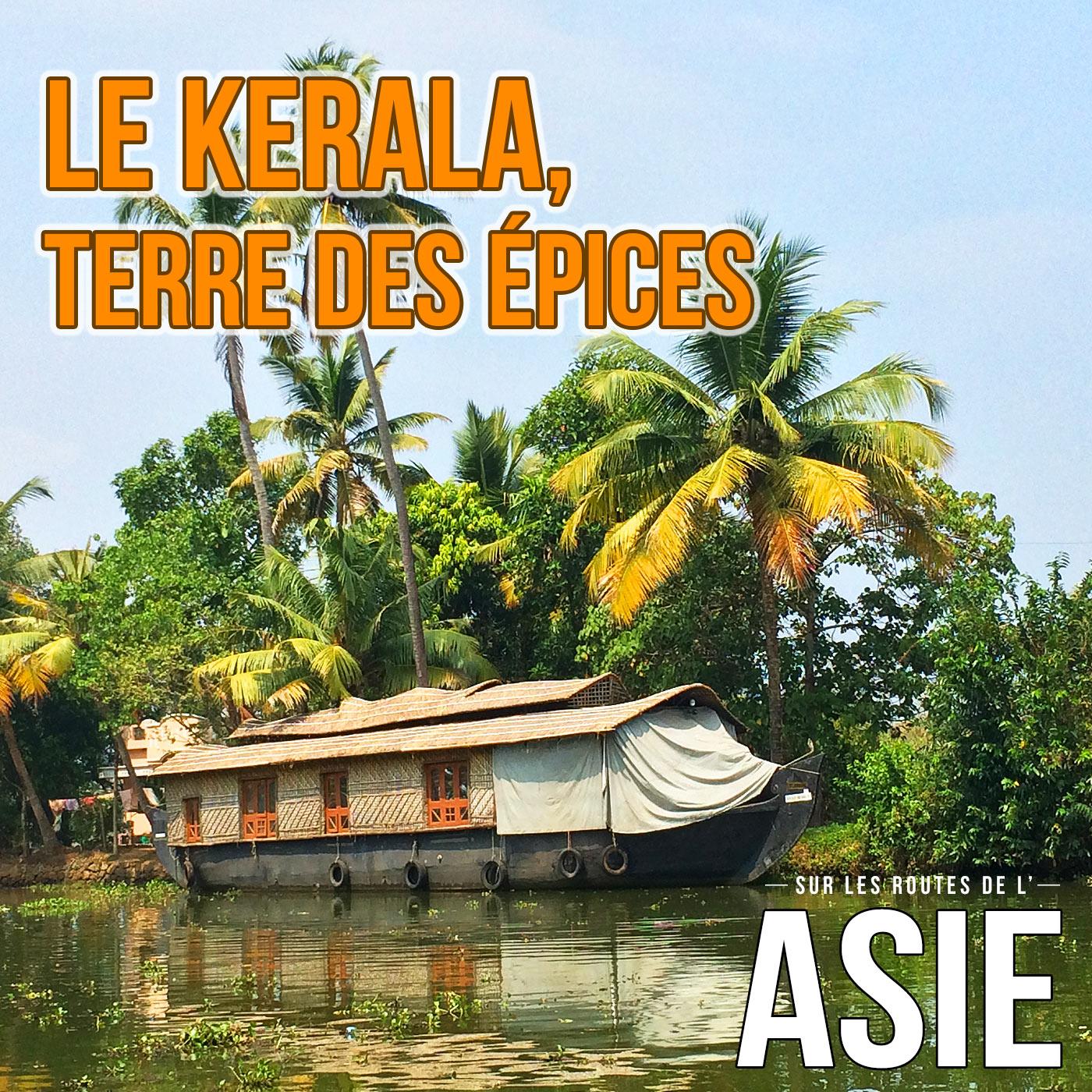 Le Kerala, terre des épices (Inde)
