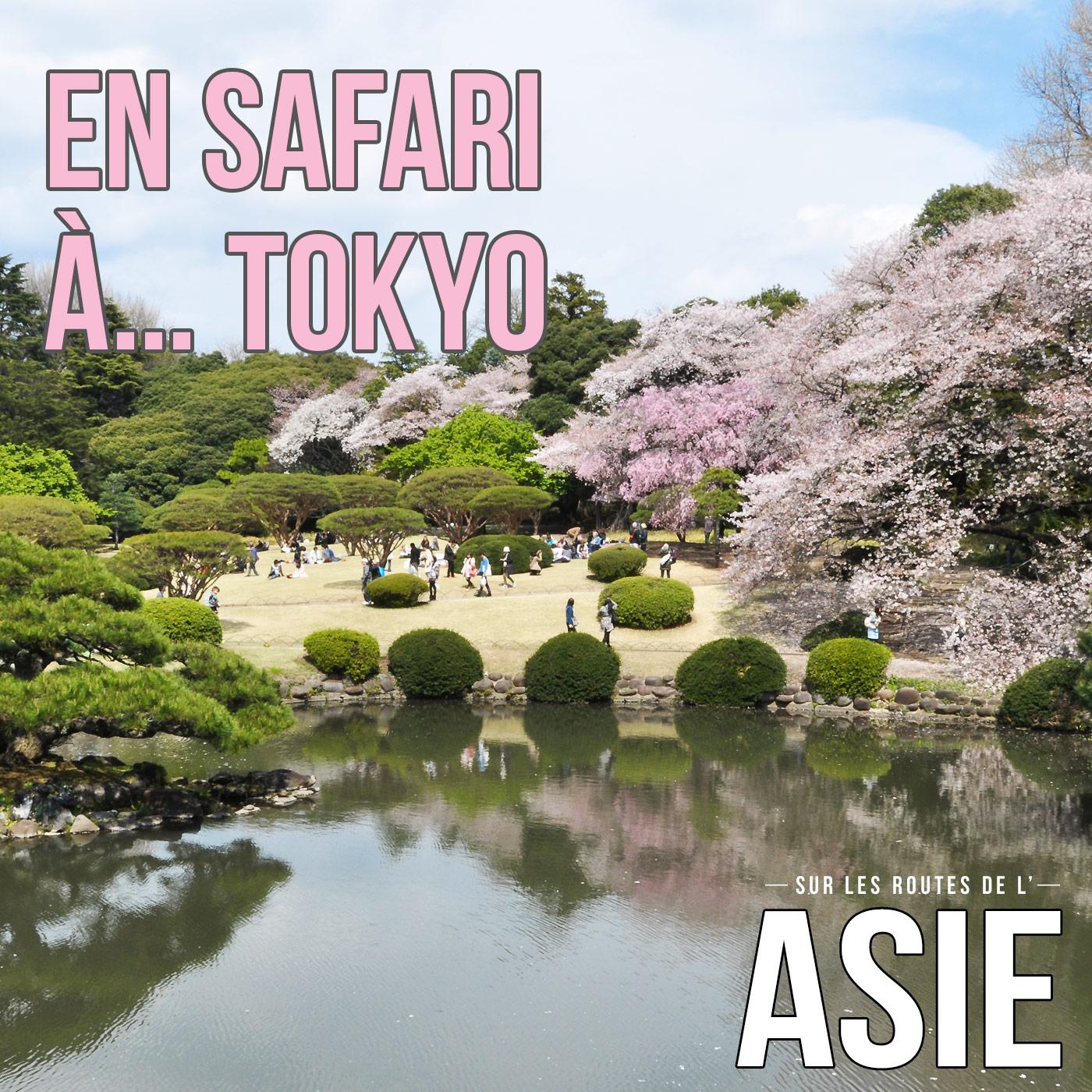 En safari à... Tokyo (Japon)