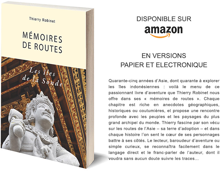 memoires-de-routes-les-iles-de-la-sonde-amazon